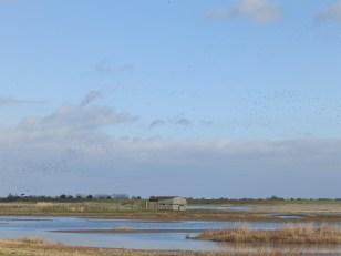 Great sky at FRampton Marsh