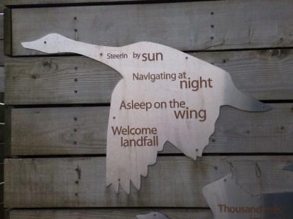 Goose poem - Anderby Creek