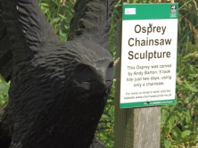 Detail - Osprey carving