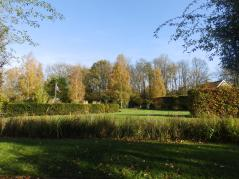 The gardens at Springfields