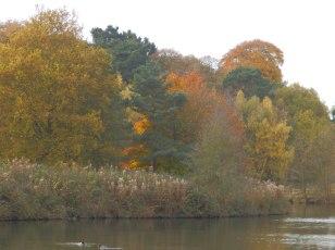 The lake at Clumber Park