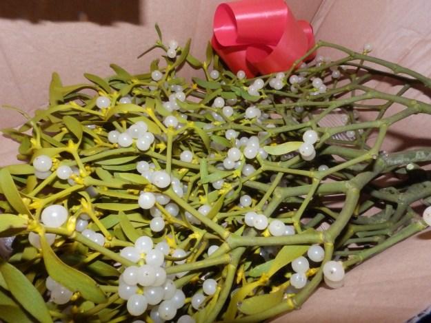 Mistletoe from eBay