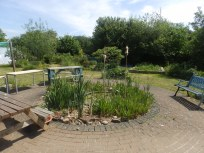 Mencap Garden Pond