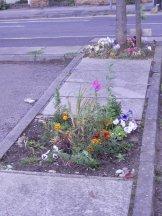 Community Gardening - Sherwood - Nottingham