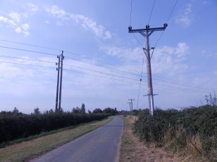 Summer Day with Wires