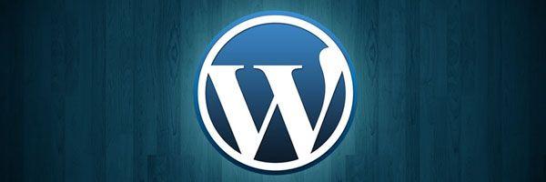 Descubra o porque seu Wordpress está consumindo tantos recursos de seu host