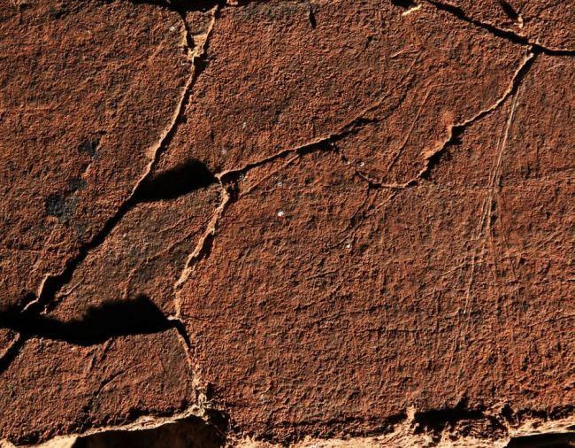 Grabados rupestres