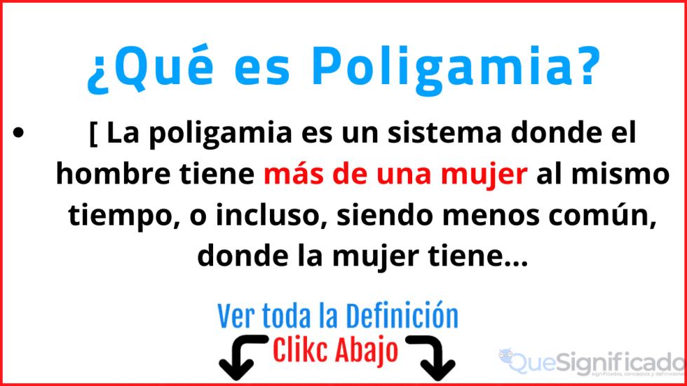 que es poligamia significado concepto definicion