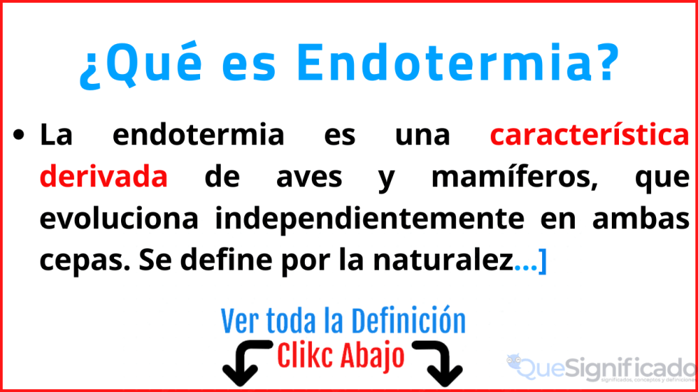 que es endotermia significado definicion caracteristicas ejemplos