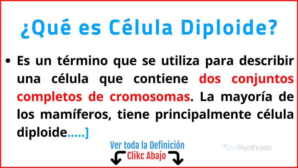 que es célula diploide