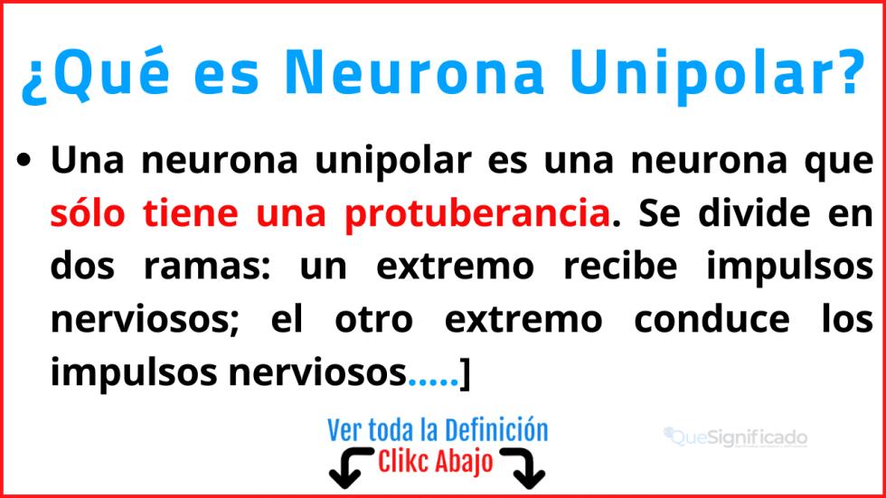 que es neurona unipolar