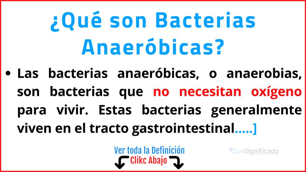 Qué son Bacterias Anaeróbicas
