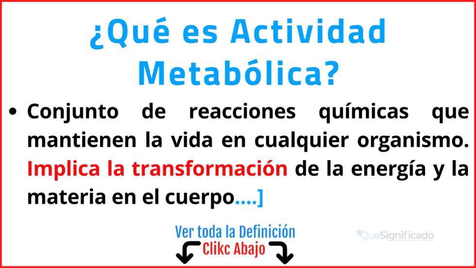 Qué es Actividad Metabólica