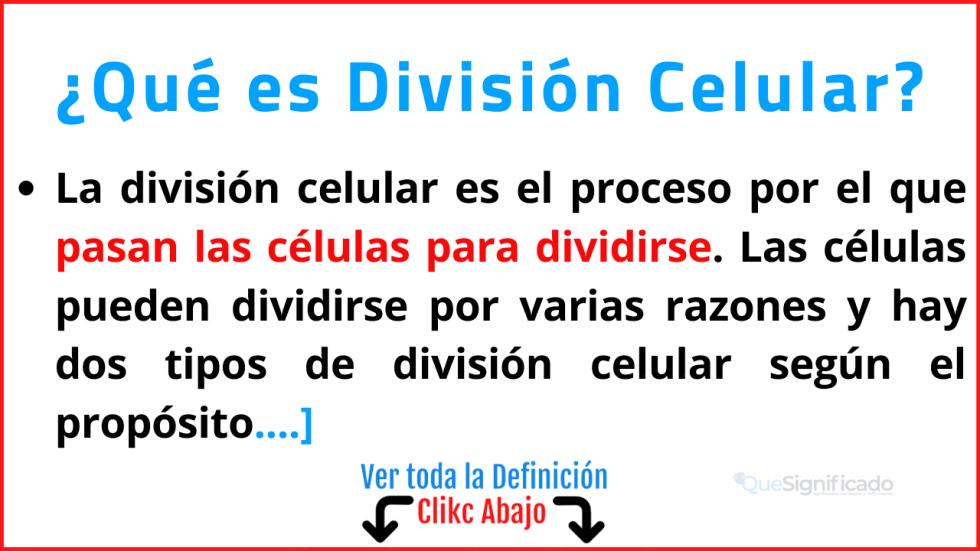Qué es División Celular