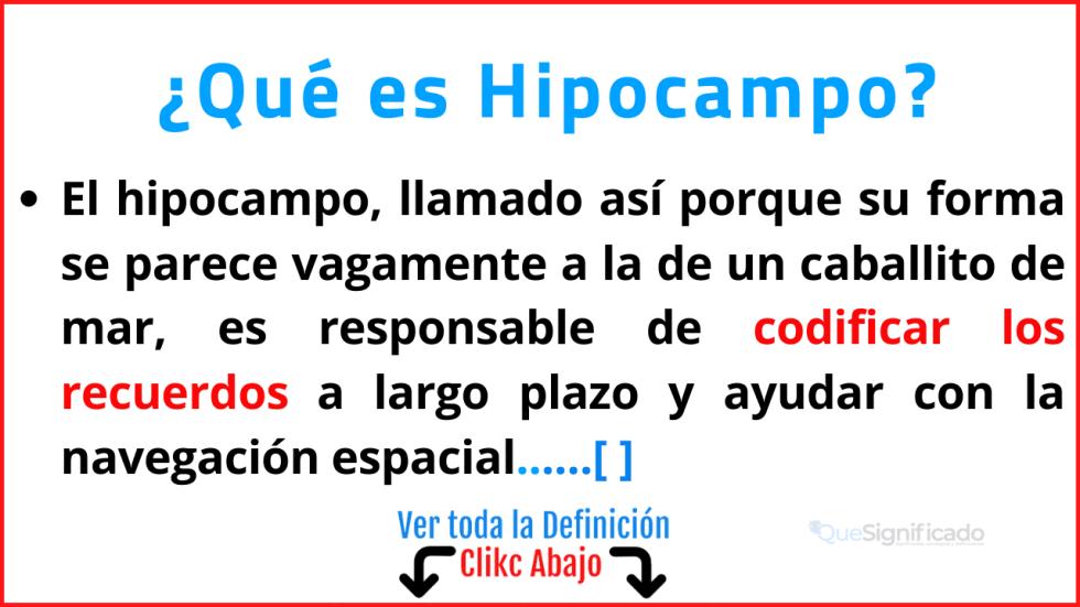 Qué es Hipocampo