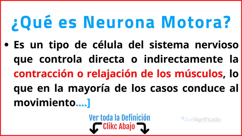 Qué es Neurona Motora