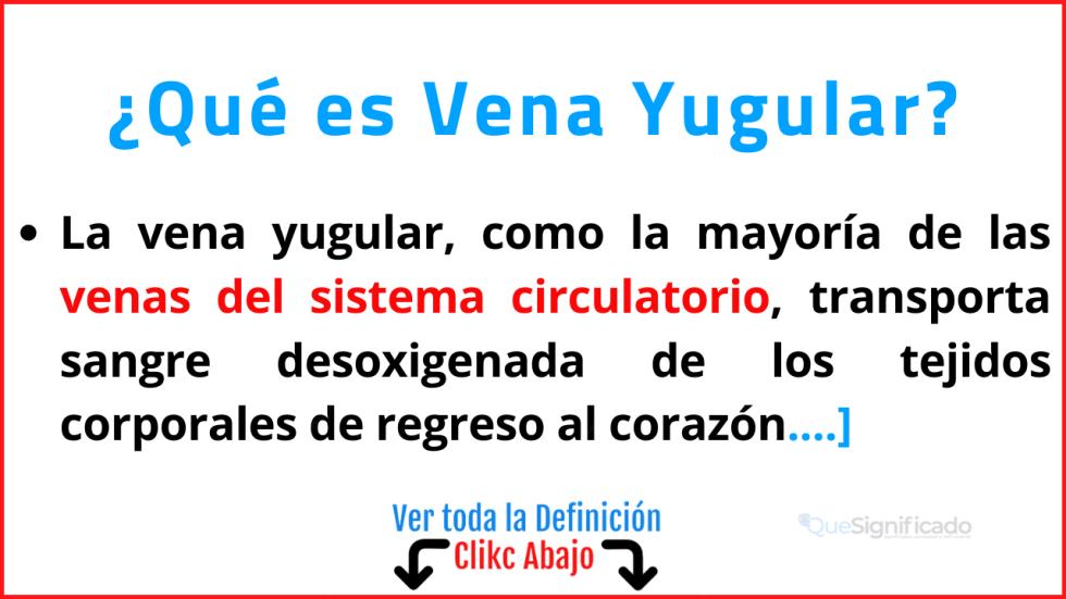 Qué es Vena Yugular