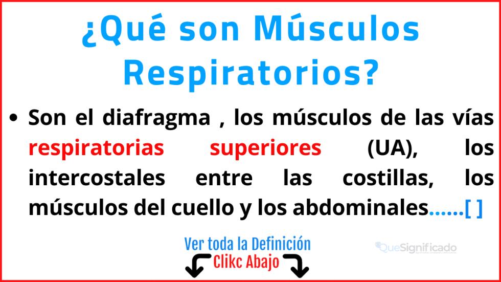 Qué son Músculos Respiratorios