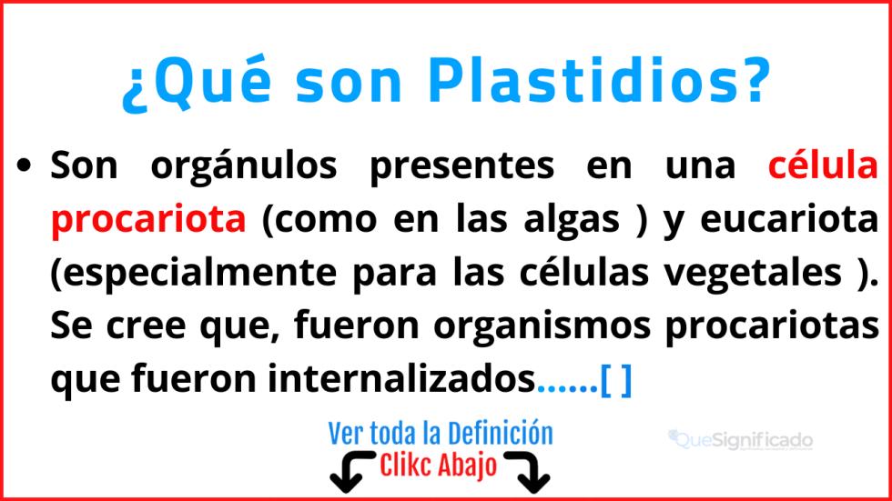 Qué son Plastidios