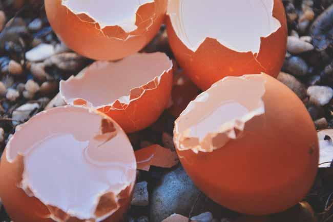 Soñar con huevos rotos con sangre