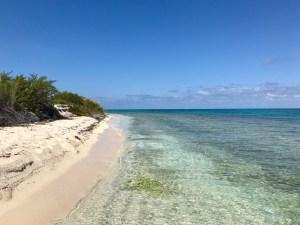 Loggerhead Key Beach