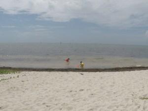 Curry Hammock Beach