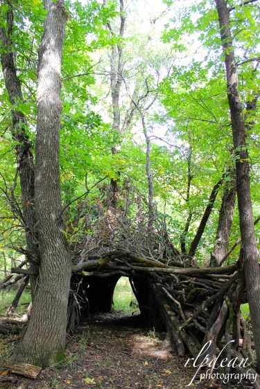 A tree fort in the woods. 2015.