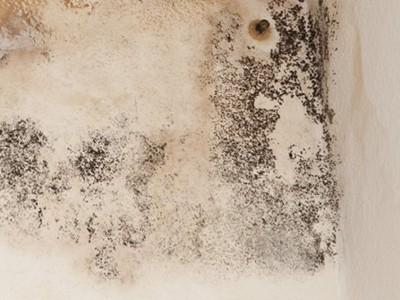 Dipingere-le-pareti-in-modo-impeccabile-011