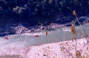Rafting trip to Rishikesh (16)