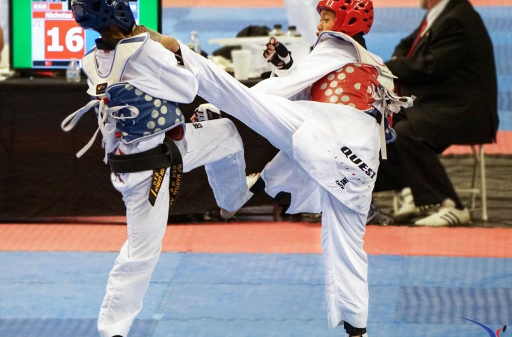 2017 International Taekwondo Festival