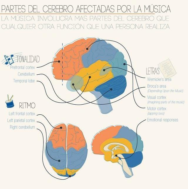 Transtorno de aprendizagem diferenças entre dislexia e tdah 4
