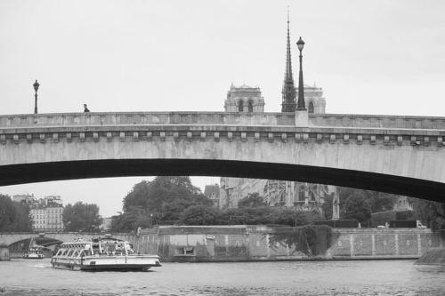 Batobus junto a la Catedral de Notre Dame