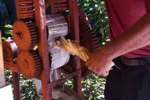 Guarapera para extraer el zumo de la caña de azúcar, qué comer en Cuba