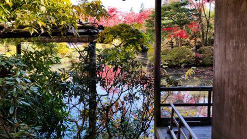 Jardín Shoyoen del Templo Rinnoji visto desde la Casa del Té