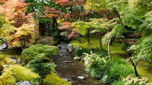 Jardines del templo Eikando o Zenrinji