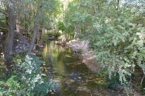 Río Dulce, afluente del Henares