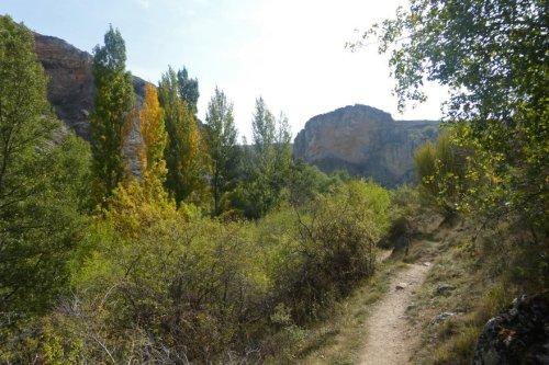Sendero en el Parque Natural del Barranco del río Dulce