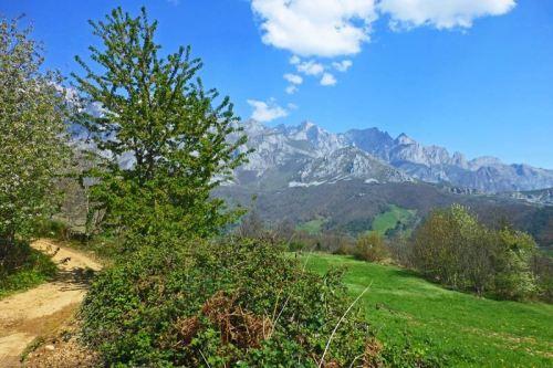 Sendero desde Mogrovejo adentrándose en los Picos de Europa
