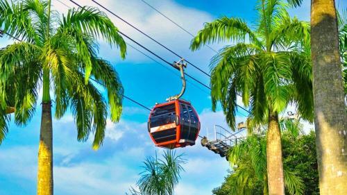 Singapore Cable Car, la forma más pintoresca de llegar a isla Sentosa