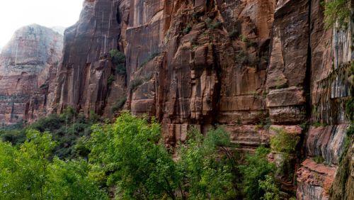 Roca que llora (Weeping Rock) en el Parque Nacional Zion