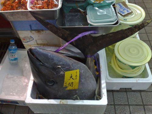 Cabeza y cola de atún en el Mercado Tsukiji