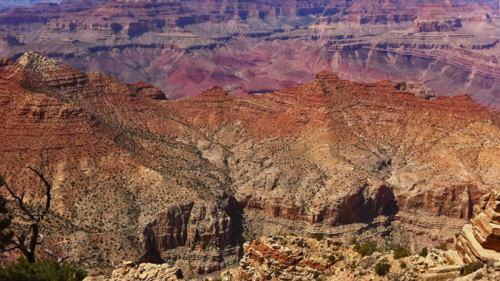 Grand Canyon National Park, uno de los más visitados de los Estados Unidos