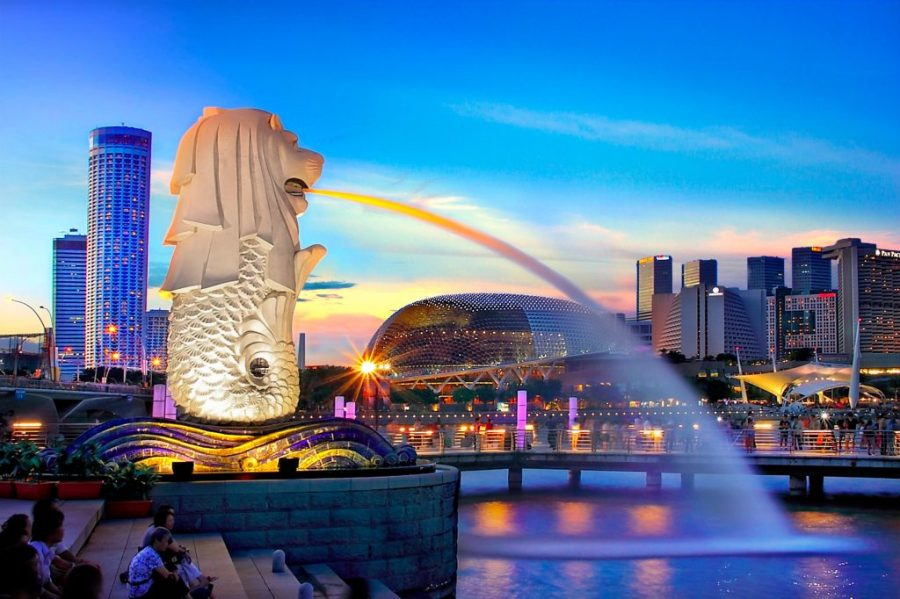 Roaming Routes Singapore cruise tour package, with comfortable and lavish stays to meet your alluring lifestyle. Roaming routes are known for their hospitality services