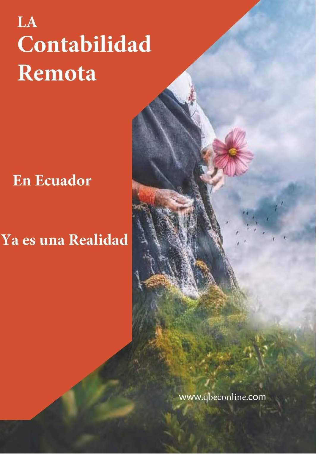 CONTABILIDAD REMOTA CON QUICKBOOKS