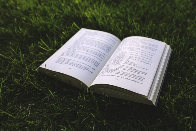 10 Best Personal Development Books Of All Time (Must-Read!)