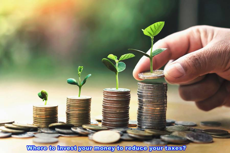 Where to invest your money to reduce your taxes