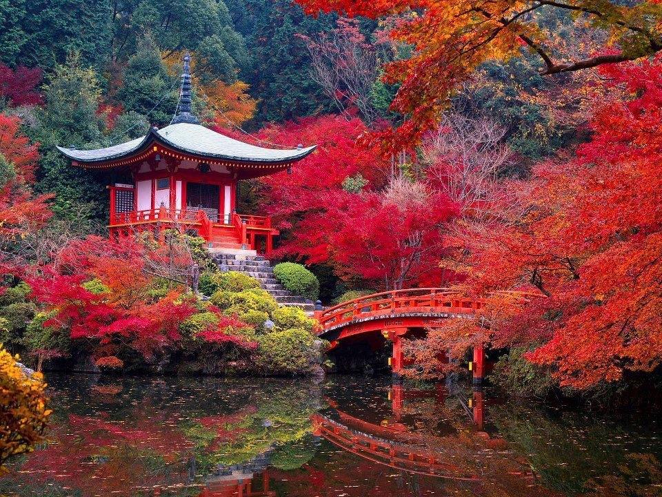 Best autumn landscapes