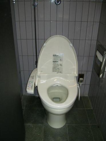 Heated Western-style toilet seat!