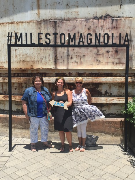 2,806 #milestomagnolia all together!