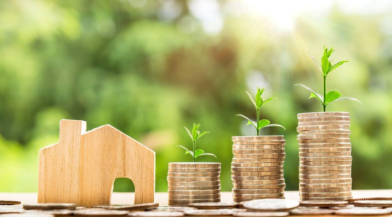 imagen de casa y dinero creciendo